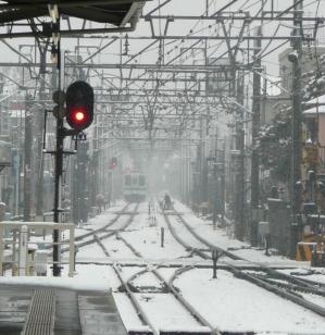 tokyo_snow_20080203.jpg